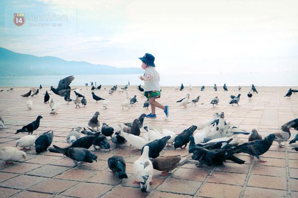 Công viên Biển Đông - HoianDanang.Com